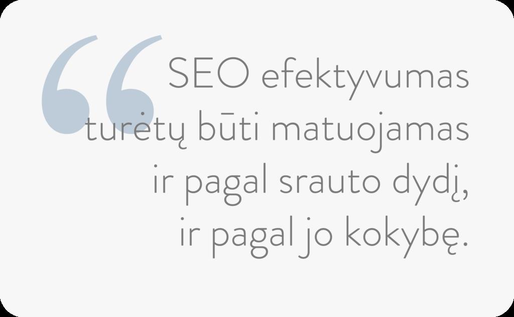 seo_efektyvumas